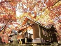 ネオオリエンタルリゾート八ヶ岳高原コテージの写真