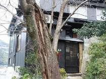 千鳥の荘「風の樹」の施設写真1