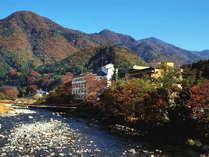人気の貸切風呂と炭火山里料理の宿 辰巳館の写真