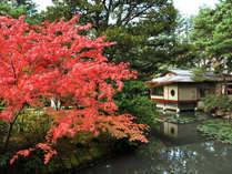 金沢・辰口温泉 やさしさの宿 まつさきの写真