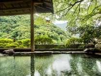 箱根湯本 ホテル 仙景の施設写真1