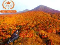 日本三秘湯 谷地温泉の施設写真1