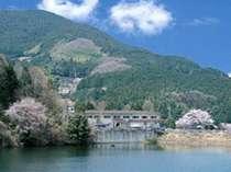 かぎろひの里 椿寿荘の写真