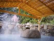那珂川温泉 皆幸乃湯(かいこうのゆ) ホテルアライの施設写真1