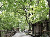 正丸峠ガーデンハウスの施設写真1