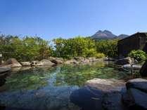 名苑と名水の宿 梅園の施設写真1