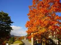 【天空の楽園】 車山高原スカイパークホテルの施設写真1