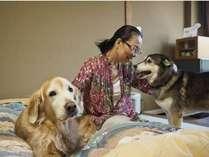 ペットと泊れる温泉宿 だいこく館の施設写真1