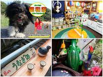 奄美大島ゲストハウス&レンタルバイク「昭和荘」の施設写真1