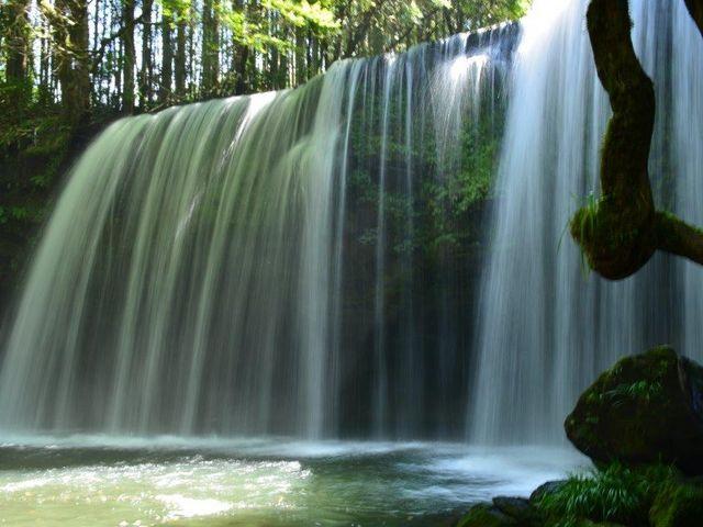 水量が豊富_鍋ヶ滝公園  ※当面の間平日のみの開園となります