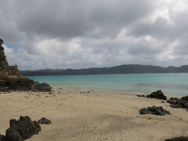 海岸南側には珊瑚が群生してるところがあります_倉崎海岸