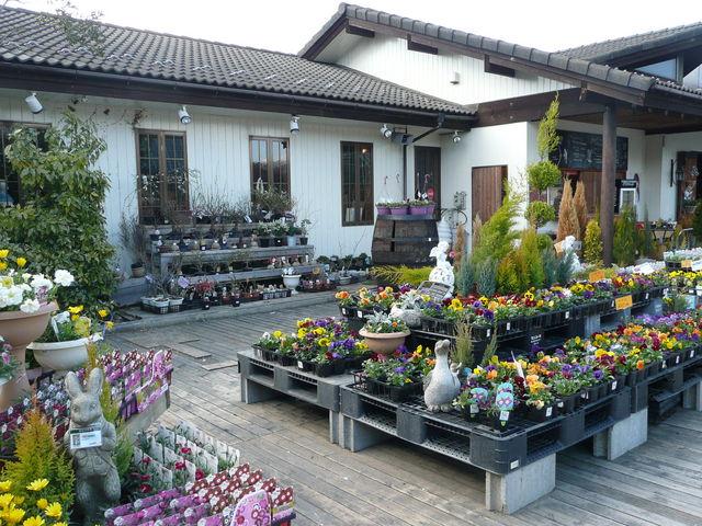 花ガーデン風景。お花も購入できますが、建物の中にお土産屋さんがあります_BRITOMART