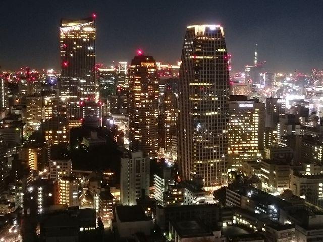 展望台1(夜景)_東京タワーメインデッキ