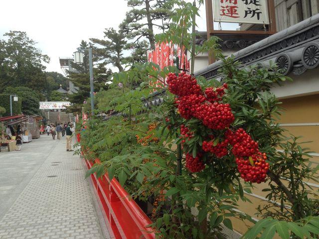 聖徳太子の創建によると伝えられる日本最初の観音霊場である中山寺_中山寺
