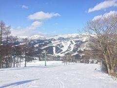 高原 場 白鳥 スキー