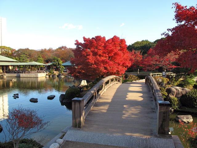 大仙公園内、日本庭園(紅葉)_大仙公園