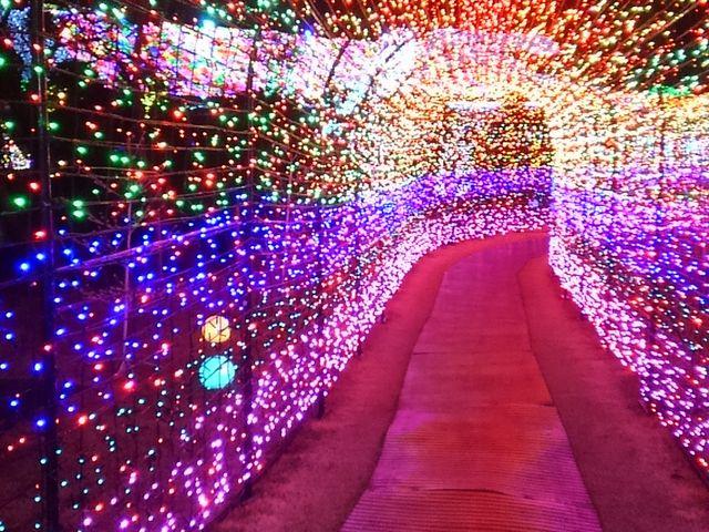 ぐらんぱるトンネル_伊豆ぐらんぱる公園