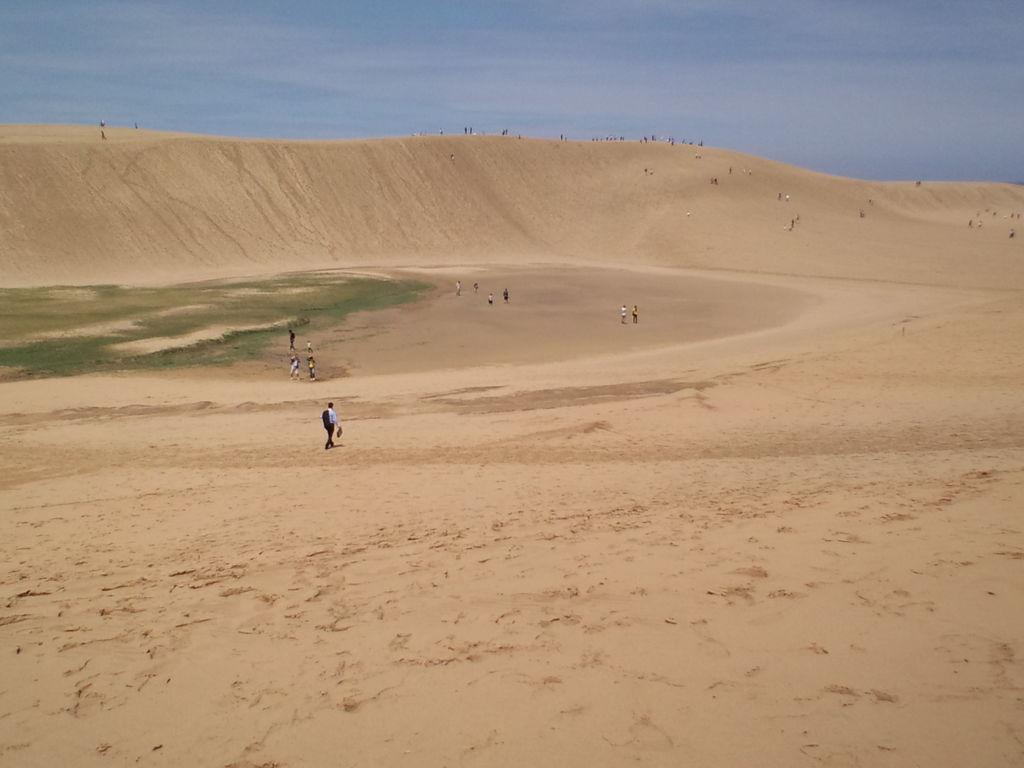砂丘 日本 一 大きな