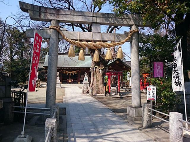 鳥居越しの本殿_新田神社