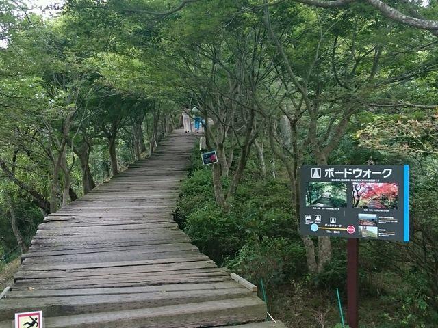 ボードウォークの道_伊豆パノラマパーク