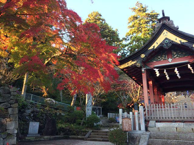 美しい紅葉_筑波山神社