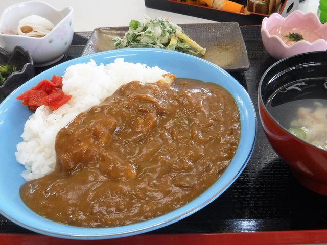 お魚カレー_よっちゃーれセンター