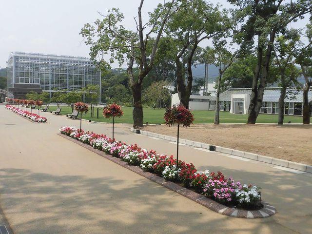 ②_青島亜熱帯植物園