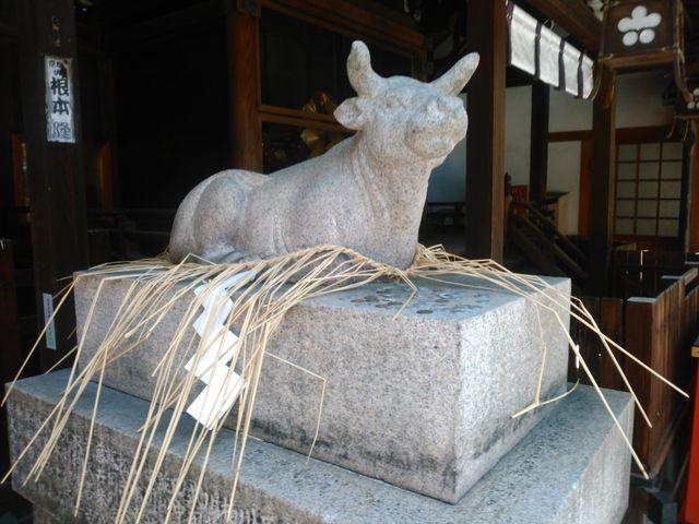 臥牛像_京都ゑびす神社
