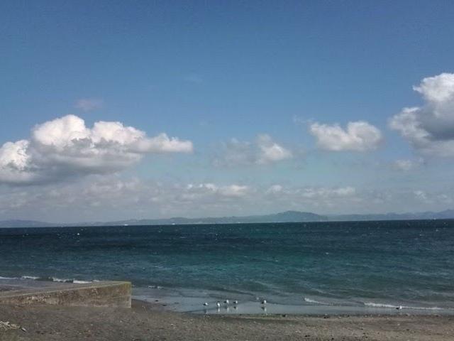 海水浴は終わった後でしたが、海岸沿いをお散歩して、綺麗だったのでついパシャり!_三浦海岸海水浴場