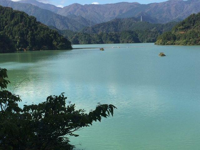 グリーンで綺麗!_宮ヶ瀬湖