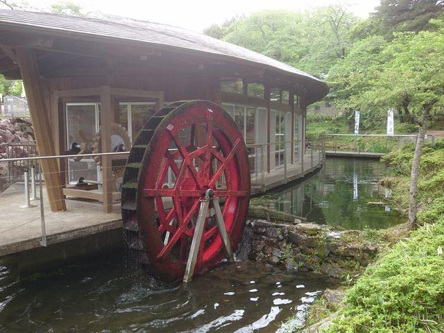 水車もありました_天水舎