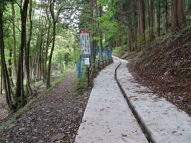 郷人憩いの遊歩道、左へ行きます_鎌掛の屏風岩