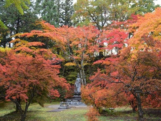紅葉の全景です_霊松寺