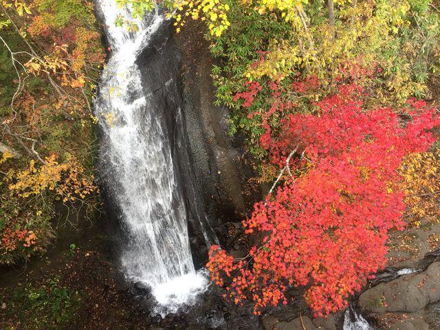 橋の上から_三段の滝