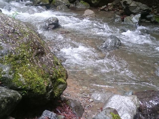 川もきれい_新戸キャンプ場