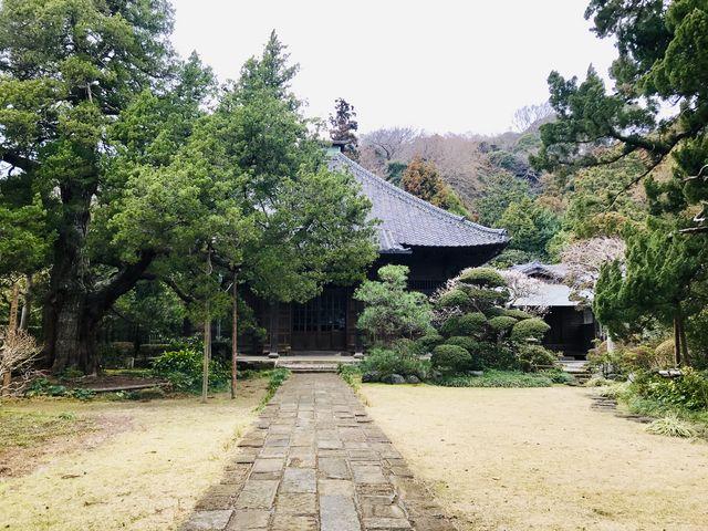 【寿福寺】門から眺めた本堂_寿福寺