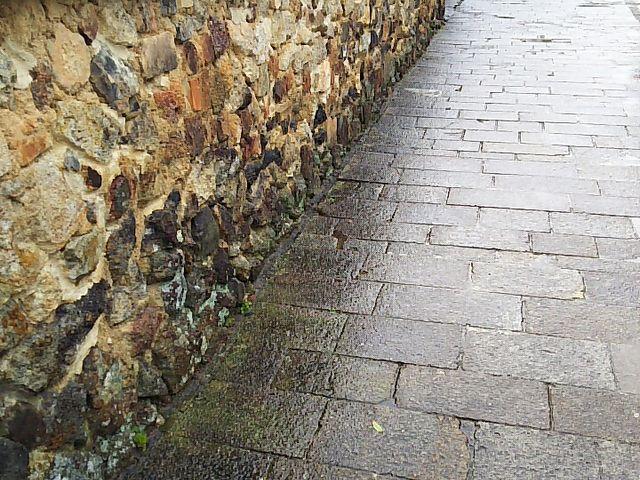塀です。_トンバイ塀のある裏通り