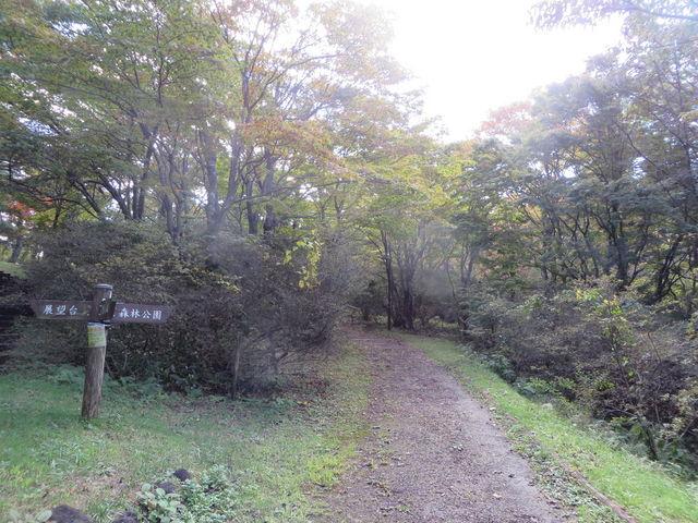 遊歩道_伊香保森林公園