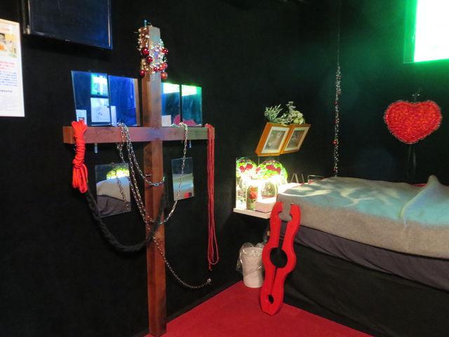 展示物_命と性ミュージアム