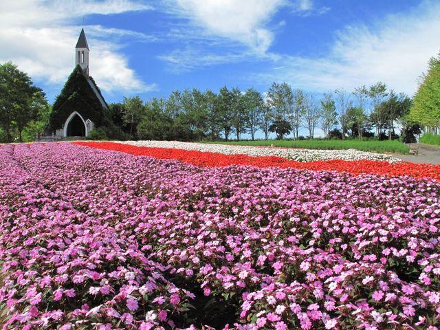 教会前のサンパチエンス(7月~10月)_ひるがの高原 牧歌の里