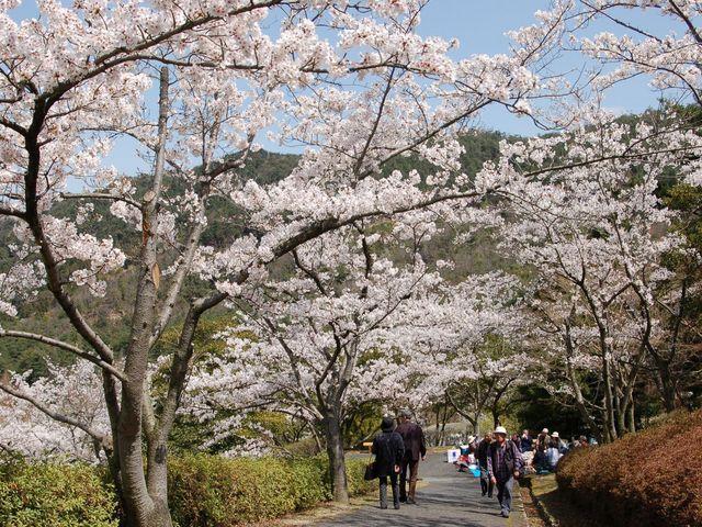 ひろしま遊学の森 広島県緑化センター・県立広島緑化植物公園