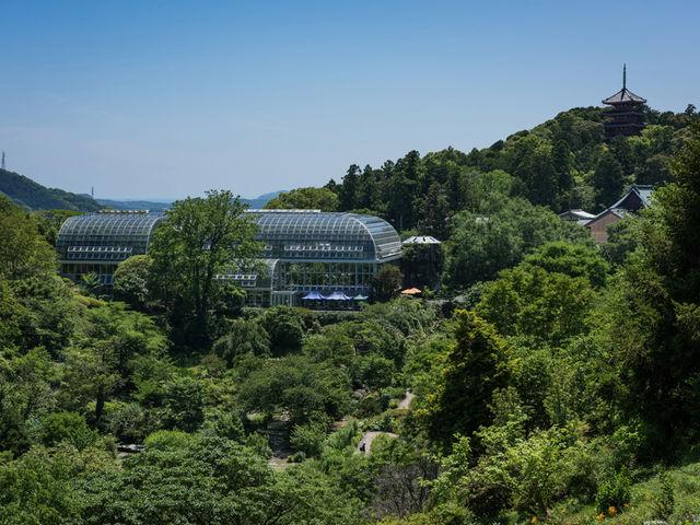 南園_高知県立牧野植物園