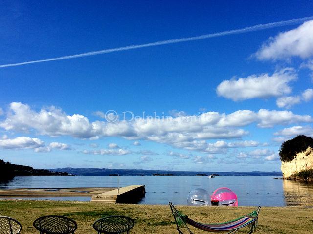 プライベートビーチの様な空間で近場のリゾート気分_Dolphin Smile