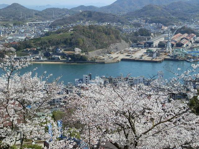展望台から見る尾道水道_千光寺公園展望台