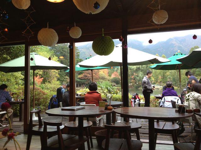 カフェからの眺め_金鱗湖