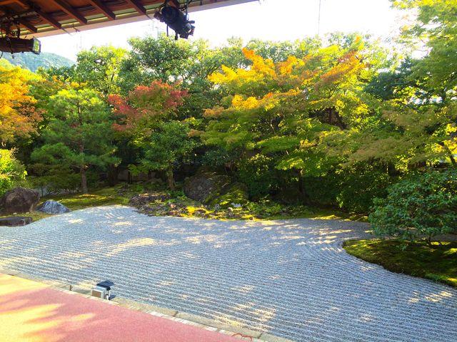 圓徳院 南庭_圓徳院