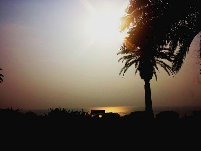 ゆったりとに昇る朝陽の光が海面を温めています!\(^o^)/_日南海岸