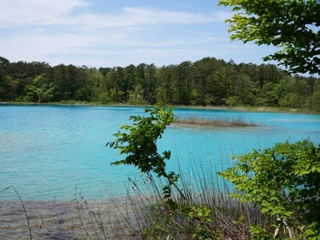 吸い込まれるような、美しい水色の「弁天沼」です。_五色沼自然探勝路