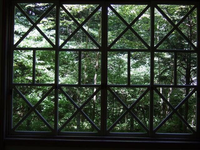 ホテル内から観た自然豊かな森_重要文化財 旧三笠ホテル