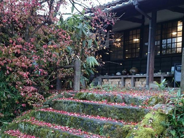 紅葉がとても綺麗です。 季節ごとの美しさを堪能出来ます。_日月窯